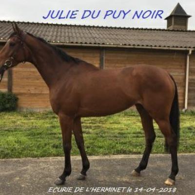 Julie du Puy Noir