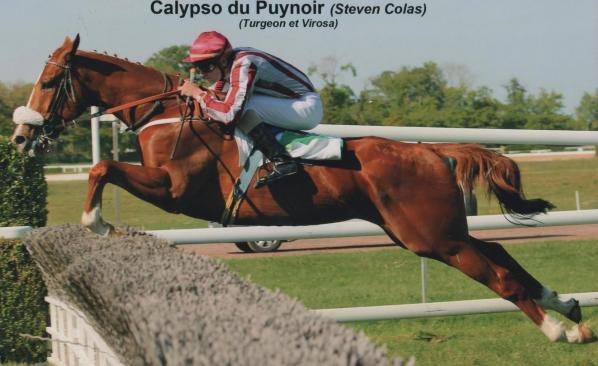 Calypso Du Puy Noir