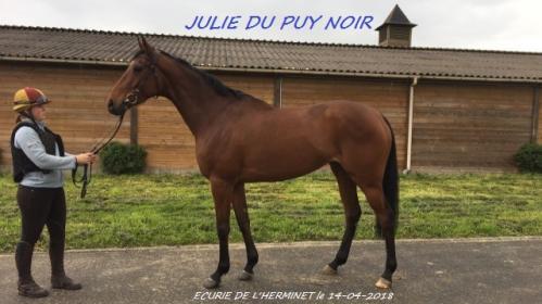Julie du puy noir 2